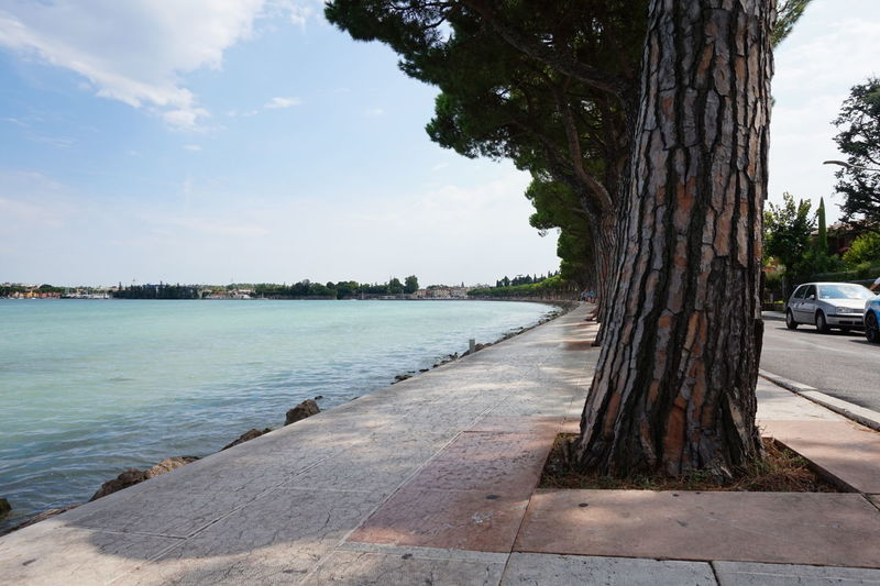#lakegarda #verona Beach City Day Nature No People Outdoors Sea Sky Tranquility Travel Travel Destinations Tree Tree Trunk Vacations Water