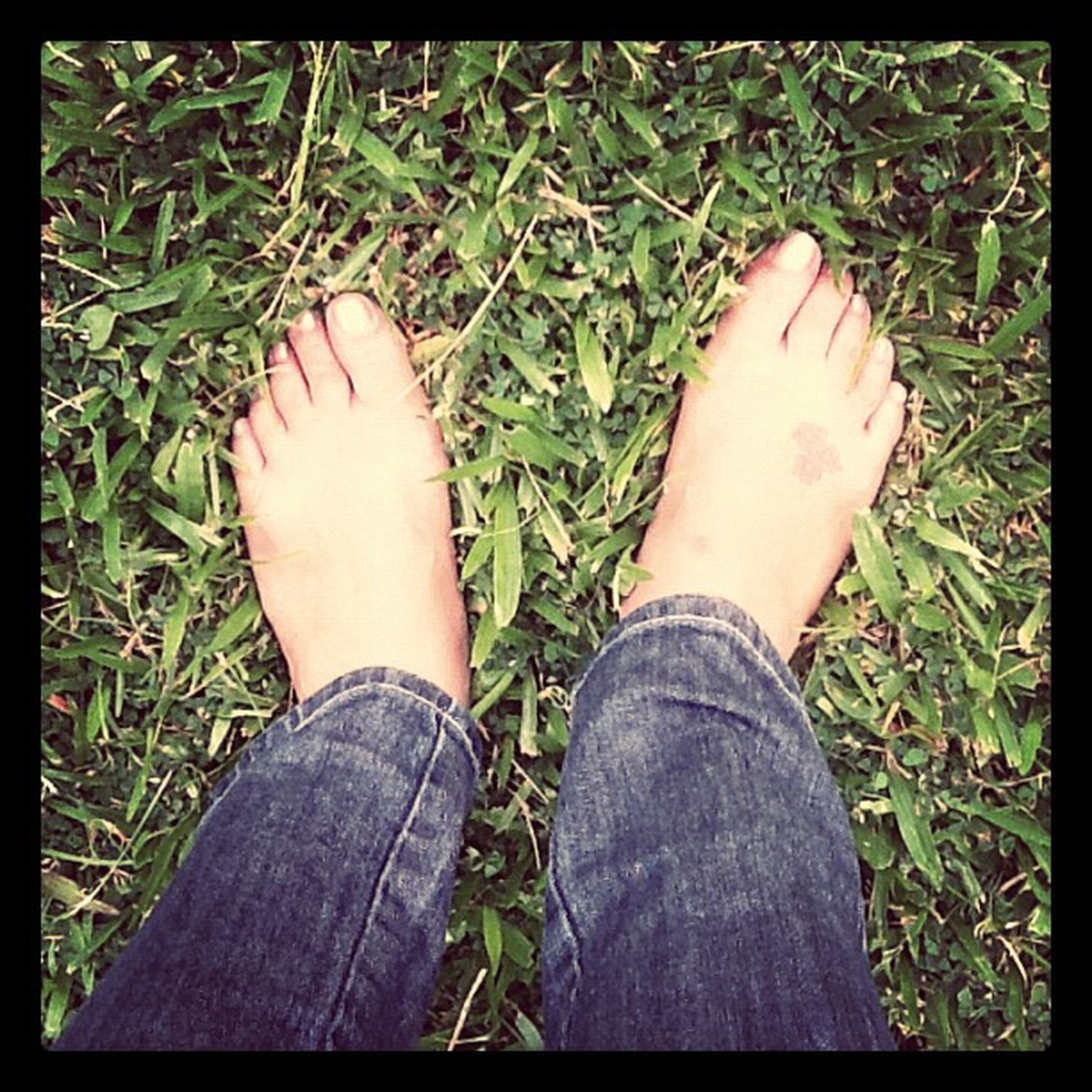 low section, person, personal perspective, grass, transfer print, human foot, shoe, high angle view, lifestyles, field, auto post production filter, part of, barefoot, grassy, leisure activity, standing, jeans