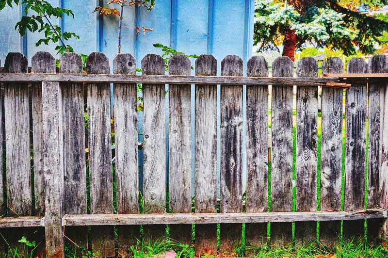Fence Fence Outdoors Day Wood - Material No People