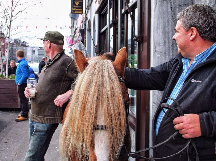 """""""What is this life, if, full of care, We have no time to stand and stare"""" Willian Henry Davis. Ballinasloe horse fair. Almost anything furred or feathered can be bargained for here. A week long fair, going back 200 years😳 Enjoying Life Tadaa Community EyeEm Nature Lover Wednesday Word Of Wisdom"""