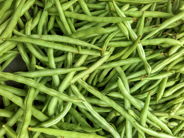 harvested bean Full Frame Green Color Food Food And Drink Backgrounds Wellbeing Vegetable Still Life Abundance Healthy Eating Freshness Large Group Of Objects No People Green Bean Bean Indoors  Close-up High Angle View Heap Directly Above