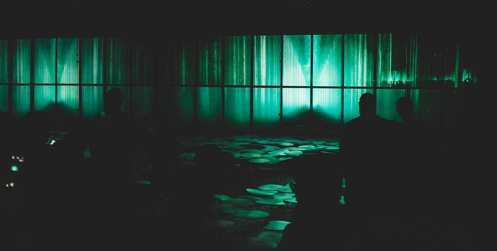Virtual forest Arts Culture And Entertainment Dark Expo Expo 2015 Expo Milano Expo Milano 2015 Expo2015 Expo2015milano EyeEm Milano Fuji X100s FUJIFILM X100S Glowing Japan Japanese  Japanese Culture Japanese Style Milan Milan,Italy Milano Milano Expo 2015 X100S