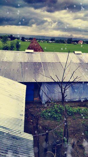 Rural Eye Roof