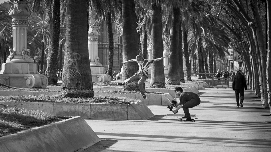 Black & White Day Full Length Leisure Activity Lifestyles Men Outdoors Park People Real People Skateboarding Skill  Streetphotography Tree Videoshoot