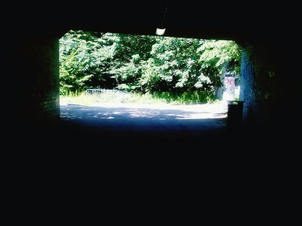"""IntoDLight"" Urban Walk Summersummersummertime Takingpics📷🐞💘 ArtEscape Huging Nature Tunnelvision"