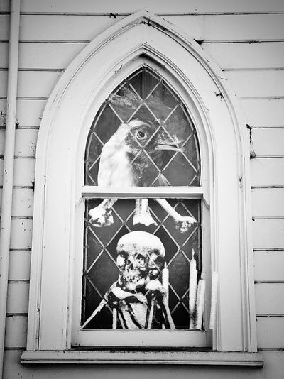 Window Ornate Day Building Exterior No People Built Structure Architecture Outdoors Close-up Funny Vintage Humorous Absurdism Absurd Surrealism Bizzare Psychedelic Strange Weird Abstract Art Curiosities Unusual Surreal Skull Bones
