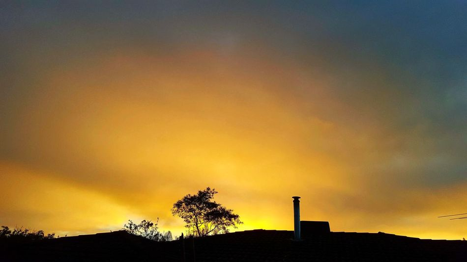 striking yellow sunrise - SuburbanSimplicity My View Yellow Sunrise Rooftop Simply Beautiful Striking Silhouette Silhouette And Sky Morning Light No People Australian