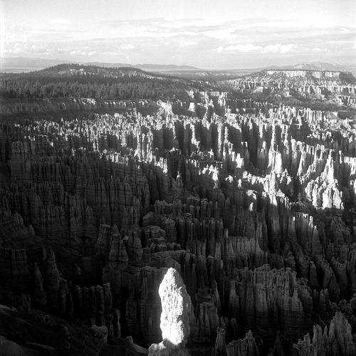 Brice Canyon Film Ishootfilm USA Beauty In Nature Day Film Photography Filmisnotdead Geology Landscape Mountain Nature No People Outdoors Physical Geography Rock - Object Rock Formation Rock Hoodoo Rolleiflex Scenics Tranquil Scene Tranquility Travel Destinations