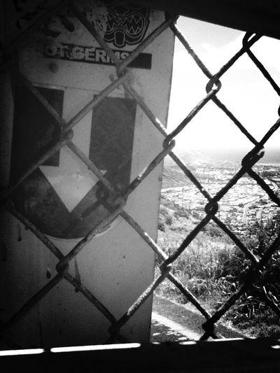U down!? This my home! Gasmask...#fmhi #pineappleclan #farmersmarkethawaii #spreadalohanotgerms #thepineappleclan #akua