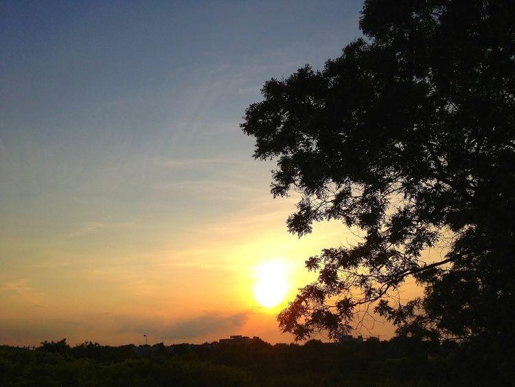 EyeEm Best Shots - Sunsets + Sunrise Skyporn