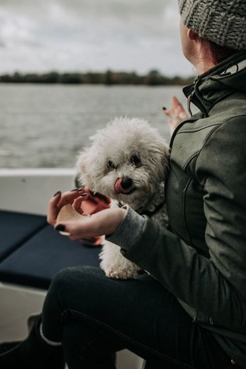 Target - set 🎯 | Sigma 50mm f/1.4 Pets Dog Real People Men One Person One Animal Sitting Holding Lifestyles Mammal Domestic Animals Human Body Part Human Hand Day Outdoors Friendship Nature Close-up Adult People EyeEm Selects Pets Corner Bichonfrise Bichon Animal Themes