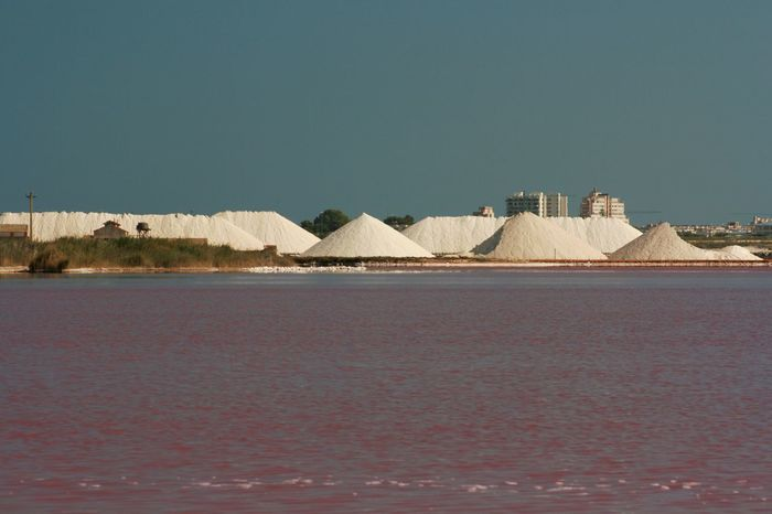So, this is where the salt comes from: Torrevieja, Spain. Beauty In Nature Clear Sky Idyllic Lake View No People Pink Colour Pink Lake Pink Water Salina Rosa, Torrevieja, Spain Salt Salt Lake Salt Mountain Salt Production Scenics Torrevieja Tranquil Scene Tranquility Urban Landscape Waterfront White Mountains Colour Of Life The Magic Mission My Favorite Place Colors And Patterns TakeoverContrast
