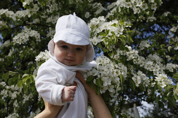 Cropped hands of parent holding son against flowering tree