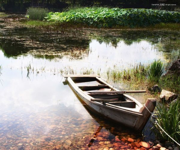 Beauty In Nature Reflection Nature Water Outdoors No People Lake Rowboat