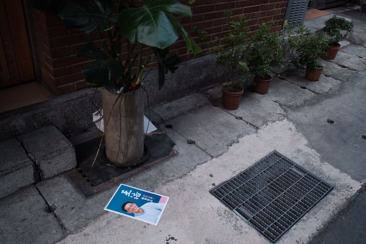High angle view of potted plants on sidewalk by building