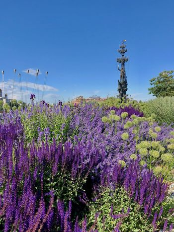 Moscow Muzeon Summertime Beauty In Nature Field Flowerbed Garden Land Lavender Lavender Flowers Monument Moscow Life Muzeonpark Nature No People Outdoors Park Park - Man Made Space Purple Summer Tranquil Scene