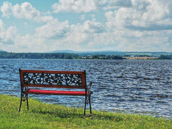 Empty bench on lakeshore