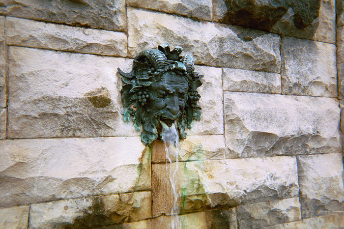 Italian fountain, the Biltmore Architecture Brick Wall Built Structure Close-up Day Detail Fountain Green Color Growing Growth Ivy Nature No People Outdoors Plant Stone Wall The Biltmore Estate Wall Wall - Building Feature