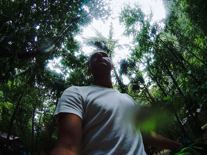 Low Angle View Of Man Walking In Forest