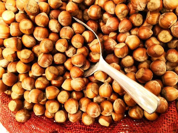 Hazelnuts with scoop, directly above