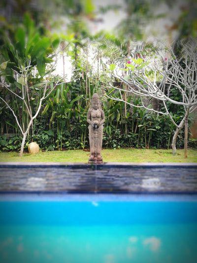 Ethnic Arca Statue Pool Tree Sculpture