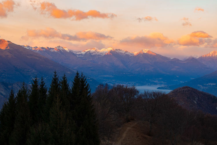 Sunset - view from mount S.primo EyeEm Best Shots EyeEm Nature Lover EyeEm Selects Tree Mountain Snow Sunset Winter Cold Temperature Rural Scene Fog Springtime Pastel Colored Pine Tree Mountain Peak Snowcapped Mountain Zermatt Mountain Ridge Evergreen Tree Coniferous Tree Pine Cone Pine Wood