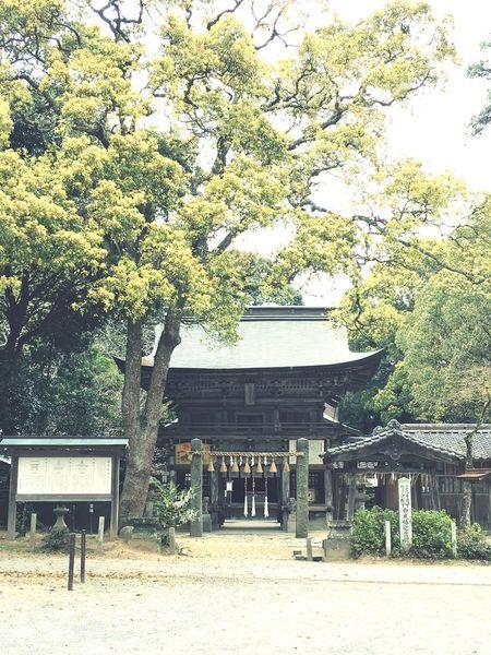 桜井神社 1 福岡県 糸島市 Shrine Shrine Of Japan Taking Photos Japan Photography Japanese Shrine Sakurai Shrine in Itoshima City Fukuoka,Japan