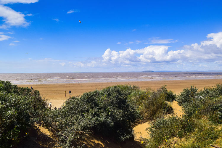 Sky Land Plant Nature No People Day Non-urban Scene Outdoors Landscape Landscape Photography Blue Sky Steep Holm Sea Scenics - Nature Beauty In Nature Beach Water Tranquil Scene Tranquility Tree Cloud - Sky Horizon Over Water Horizon Blue