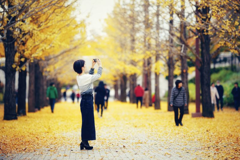 Full length of man standing by leaves in park during autumn