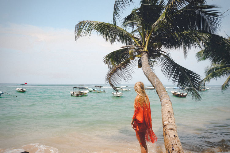 Rear view of woman standing by palm tree on beach