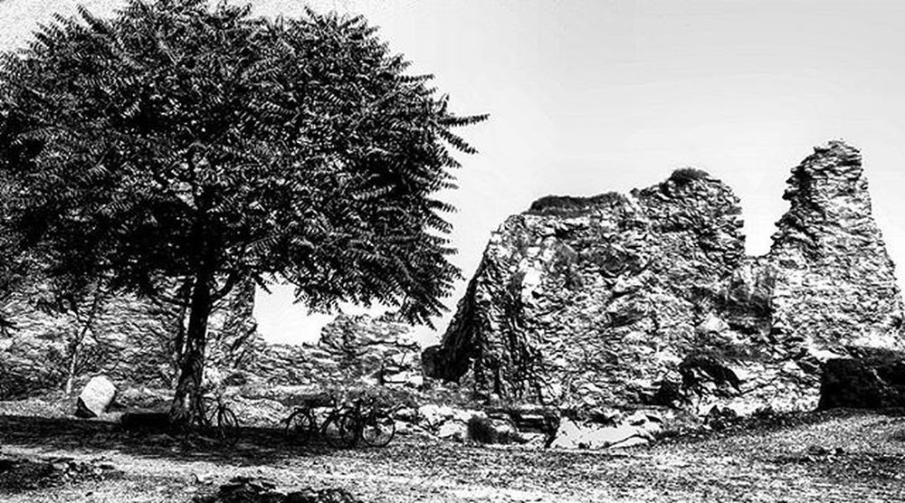 Another one from my Travels ; A Solitary Tree near Mineral Rocks ;perhaps the last one Surviving in the Area . Looks just like a Sketch Roadtrips are Awesome Somuchfun Somuch to See Know & Explore . Blackandwhite Blacknwhite Bnw_life Bnw_globe Bnw Bnw_worldwide Bnw_india Camerateur Ig_odisha Indiatravelgram sobhubaneswar thursday thrill
