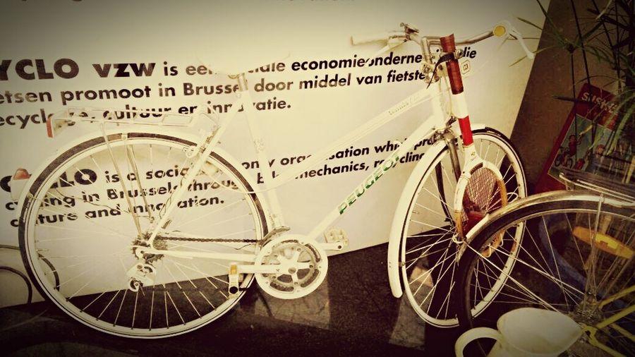 CYCLO Peugeot Tennis Club Tennis 🎾 Racket Ladies Bike Exhibition Bike Bicycle White
