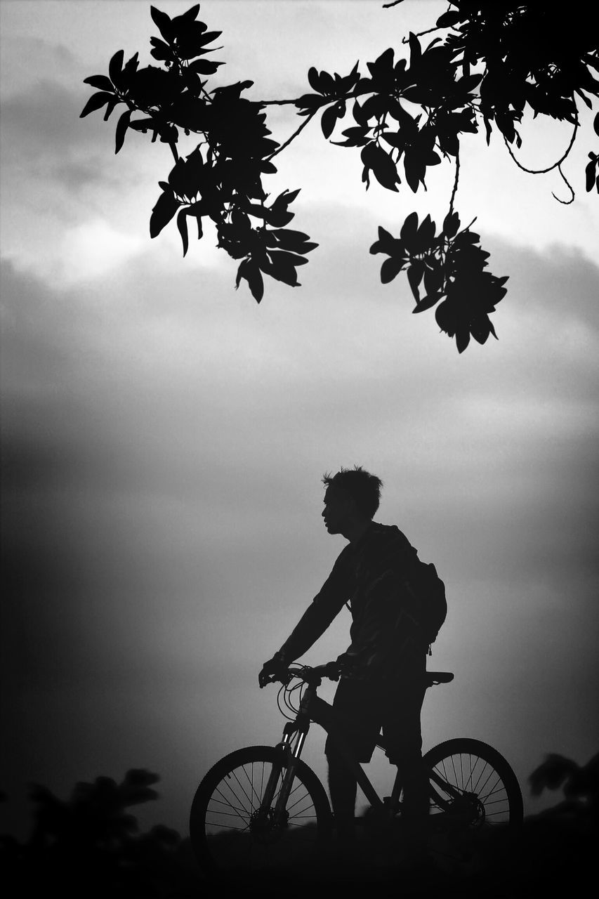 silhouette, tree, sky, bicycle, real people, one person, outdoors, cloud - sky, transportation, men, leisure activity, full length, cycling, lifestyles, side view, nature, day, low angle view, sunset, healthy lifestyle, growth, land vehicle, standing, adventure, beauty in nature, extreme sports, cycling helmet, one man only, people