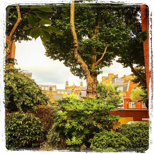 London Draycote Place