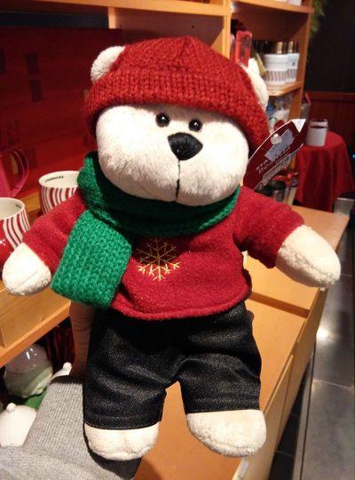 你想跟熊過這個冬天嗎?
