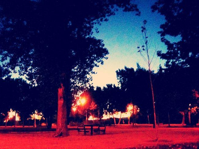 Anocheciendo en el parke