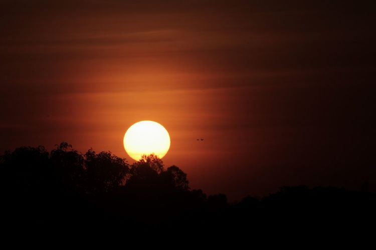 Big Sun Sunset Silhouette Beauty In Nature Scenics Circle Dramatic Sky