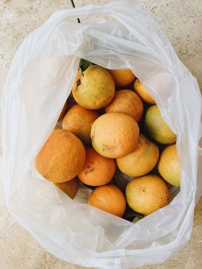 Oranges from the market in a plastic bag Fruits And Vegetables Market Plastic Bag Plastic Environment - LIMEX IMAGINE Shopping Banned Bowl Buying Citrus Fruit Enviornmental Environment Environmental Issues Food And Drink Freshness Healthy Eating High Angle View No People No Plastic Orange Orange Color Organic Organic Food Plastic Wellbeing
