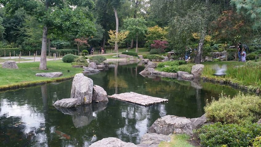 Flowers,Plants & Garden LONDON❤ Kioto garden Green Green Green!  Amazing Hello World Travelling ✈ My Friend ❤ Goholydays ✈️👜 Hello Friends :)