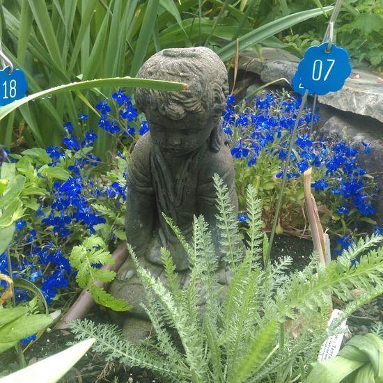 Blue Flowers Statue Garden