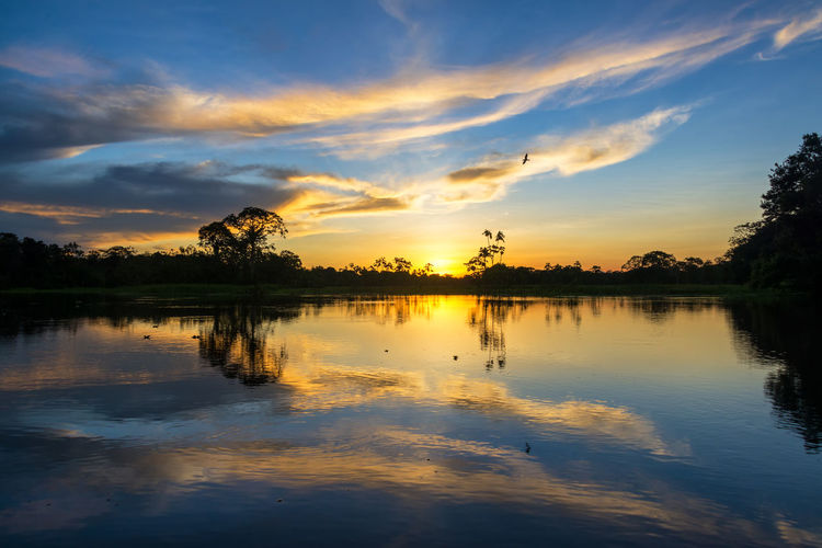 Beautiful sunset reflected on the Yanayacu River in the Amazon rain forest in Peru Adventure Amazon Amazonas Amazonia Beauty In Nature Forest Green Idyllic Iquitos  Iquitos, Perú Jungle Lake Lodge Nature Outdoors Park Peru Rainforest Reflection River South America Sunset Tree Tropical Vacation