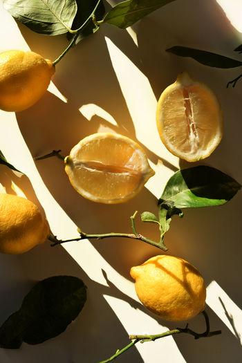 lemons and sun light Food Food And Drink Fruit Fruits Lemon Lemons Natural Light Organic Sun Sun Light