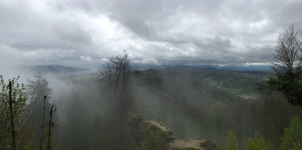 Melancholic view from the top Cloudy Dramatic Sky Hiking Melancholic Landscapes Mountain View Beauty In Nature Clouds Day Fog Hazy  Landscape Mist Mountain Mountain Range Nature No People Outdoors Scenics Sky Somber Sombermood Tree