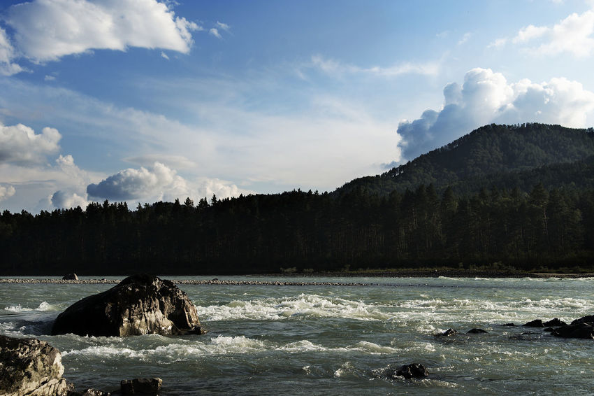 Altai Beauty In Nature Cloud - Sky Day Mountain Nature No People Outdoors Scenics Sea Sky Tranquil Scene Tranquility Tree Water Waterfront