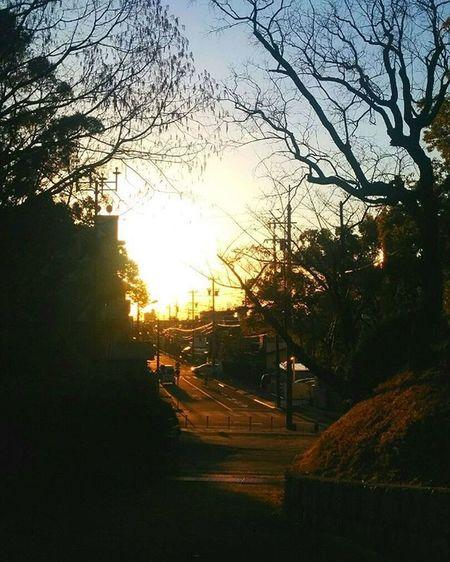 * 夕焼け 夕暮れ Sunset Dusk Russia_in_nature オレンジ Orange Vista Bestnatureshot 綺麗 眩しい 風景 Landscape Nature 自然 安らぎ 爽やか Insta_crew Photowall 空 Follow Sky Beautiful Aichi Sunset_japan_nagoya_yama 🎶