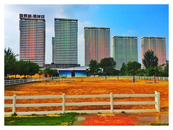 Horse riding this morning at Bayuquan, Yingkou city