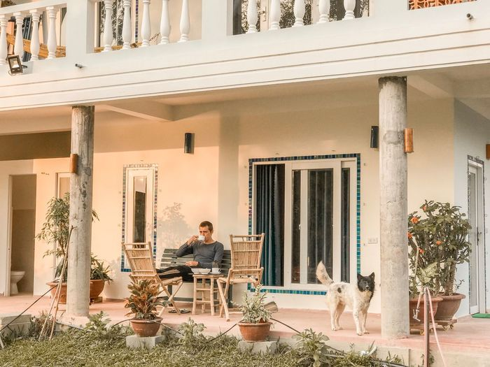 Window Pets Having Breakfast Breakfast Morning Coffee Drinking Coffee Terrace House Residential Building Dog One Person Sitting Architecture Built Structure Building Exterior Full Length Men Building Lifestyles Real People Seat Day Casual Clothing Chair Adult Young Adult Working Plant Architectural Column