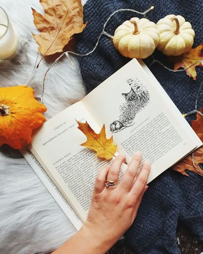 Cropped hand of woman holding book by pumpkins and dry leaves on bed