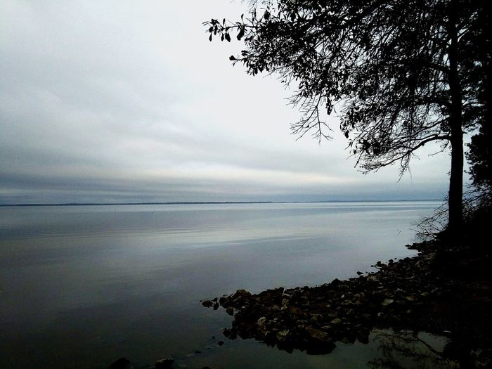 Overcast Over Water Nature No People Check This Out EyeEm Selects Eye4photography  The Great Outdoors - 2018 EyeEm Awards Beauty In Nature Landscape_photography Landscape_Collection Scenics - Nature Taking Photos Point Of View Outdoors Landscape Travel Photography Tree Water Pixelated Sky Horizon Over Water Calm Lakeside Outline Lake Tranquil Scene Tranquility Lakeshore Scenics Waterfront