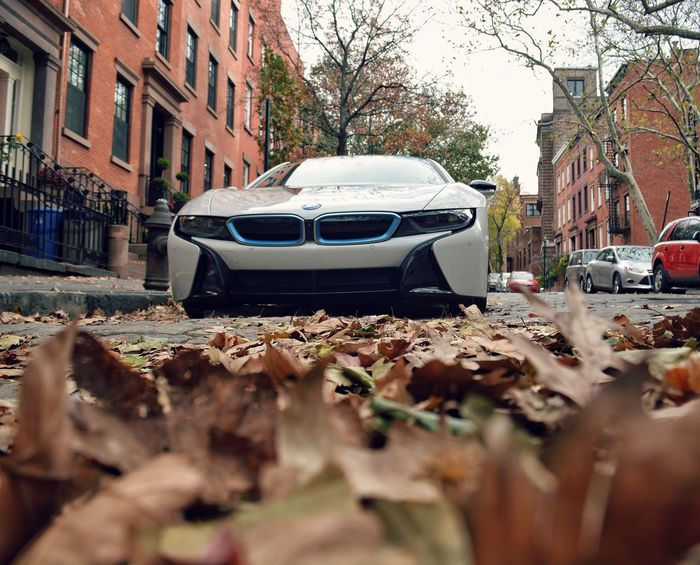 Leaf and spaceship parking only Building Exterior Architecture Transportation Built Structure Car Land Vehicle Mode Of Transport Street City Residential Building Residential Structure Surface Level Stationary Focus On Background Bare Tree Day City Life Residential District Bmw Bmwi8 BMW I8 Transportation Brooklyn Fall Autumn
